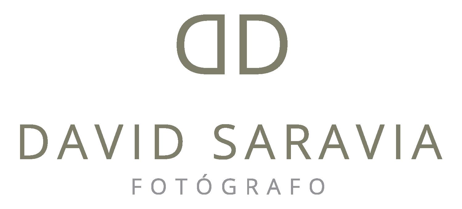 Logo David Saravia PNG